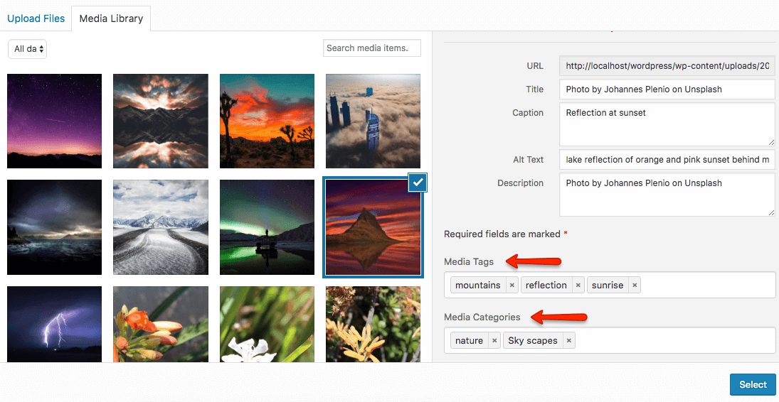 Gallery Filtering add media tags and media categories