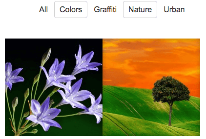 Multiple Filtering (AND) shows images under both tags