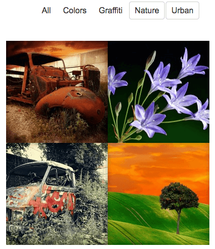 multiple filtering (or) shows images in any selected tags