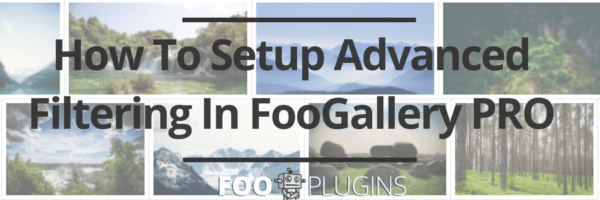 How To Setup Advanced Filtering In FooGallery PRO
