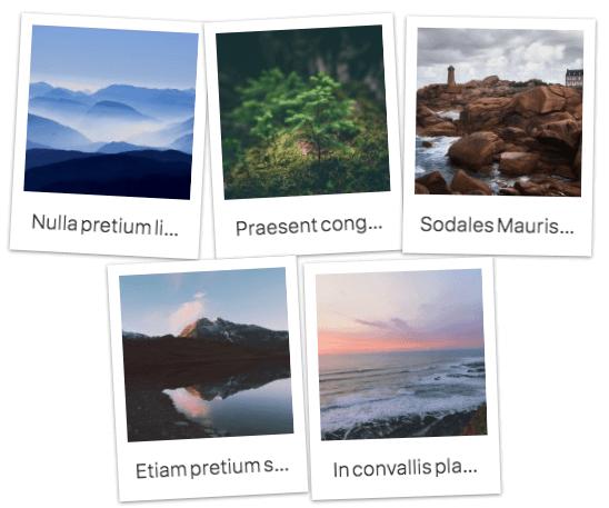 FooGallery PRO Polaroid Gallery template