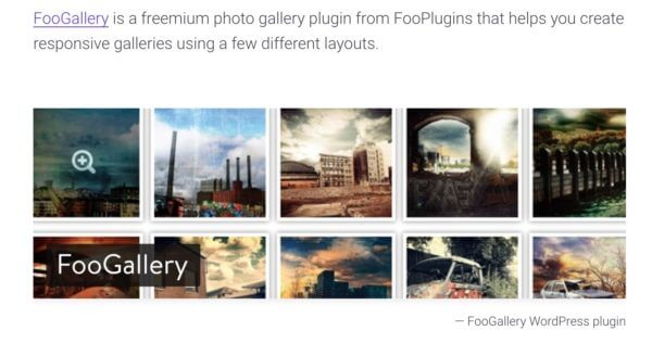 FooGallery Recommended by Kinsta