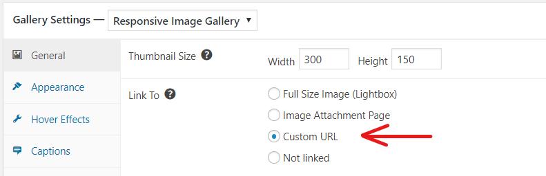 Link To Custom URL