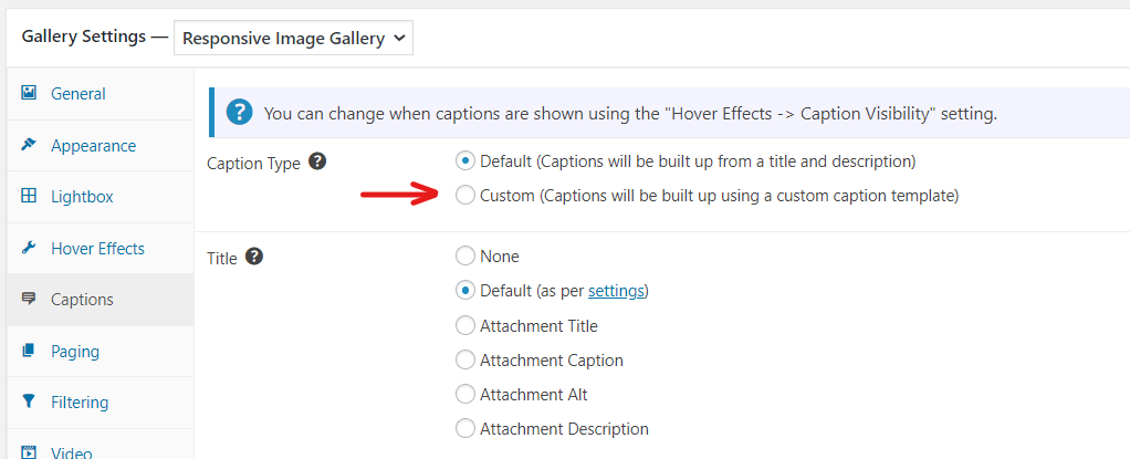 Select Custom Captions in gallery Caption settings
