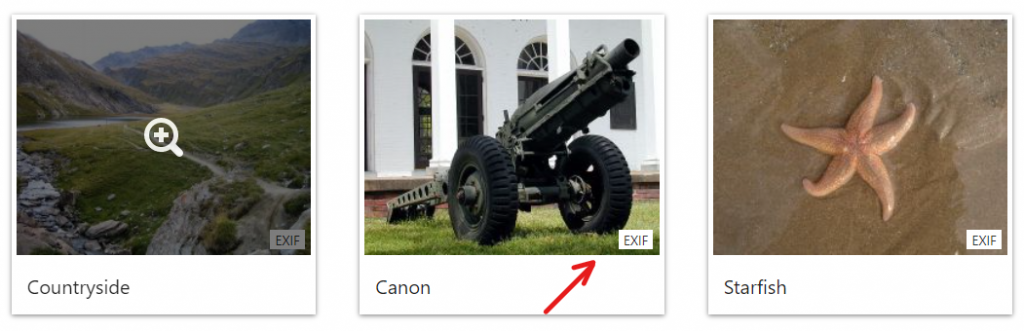 EXIF Icon on gallery thumbnails