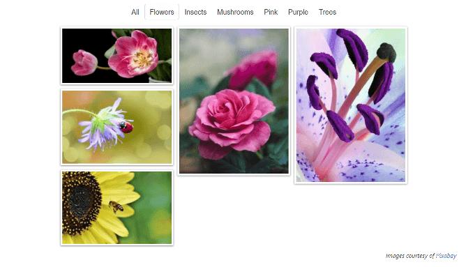 FooGallery gallery filtering