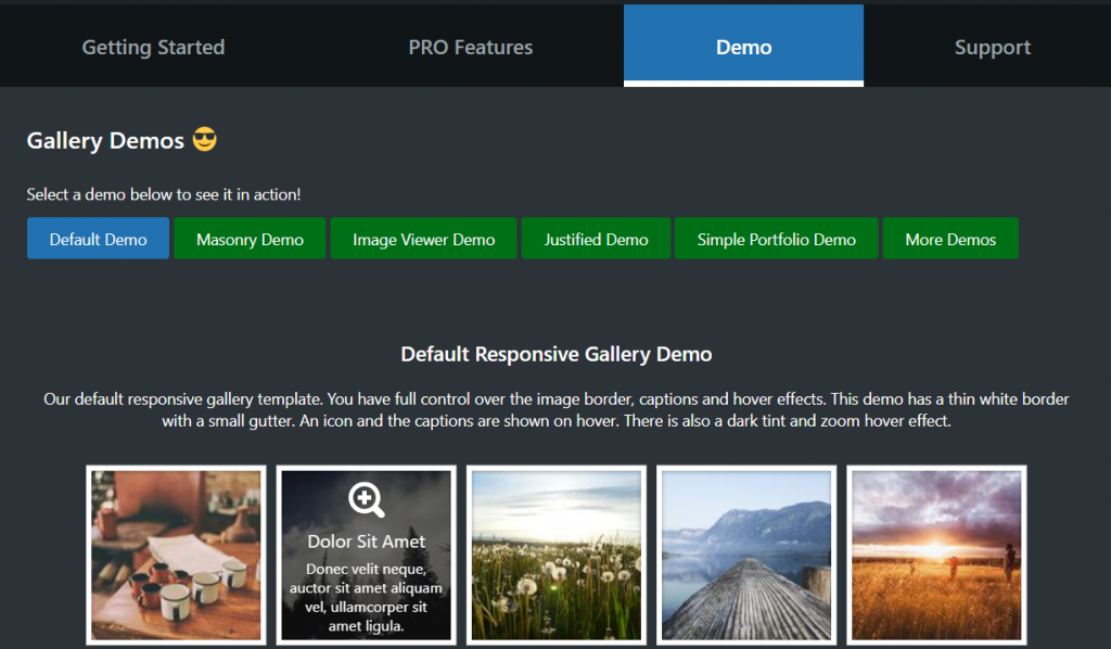 Demo tab displays selection of FooGalelry demos